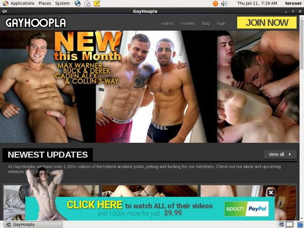 Gayhoopla Discount Site